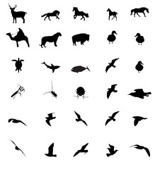 Wildlife animal silhouttes