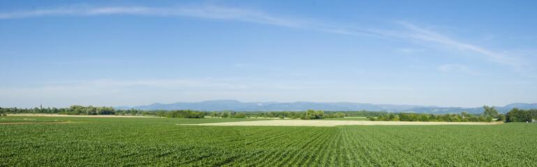 Ortenau Panorama