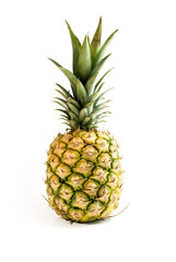Ananas Frucht