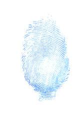 female thumb print