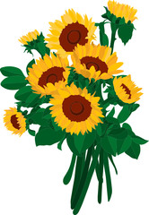 vector-the  bouquet of sunflowers