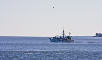 Shrimp Boat Heading Out