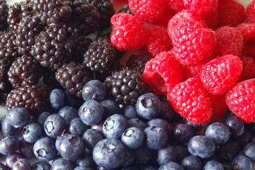Berries, Horizontal