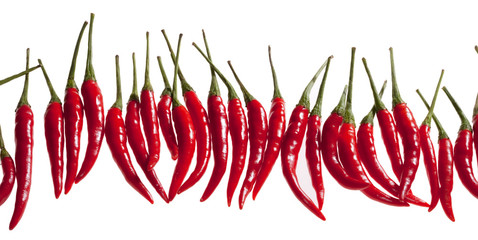 Canvas Prints Hot chili peppers small red hot chili pepper in row