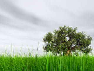3d green grass over a gray sky with white clouds