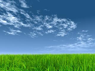 High resolution 3d green grass over a blue sky