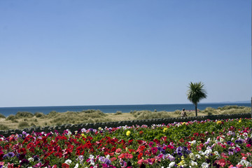 Barmouth Flower beds and sea front