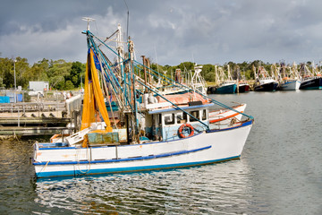 Fishing trawlers moored at docks