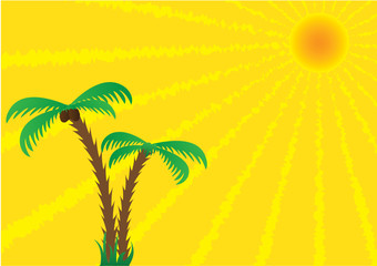 The sun and palm trees