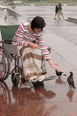 Woman on a wheelchair feeding birds.