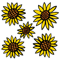 Five sunflowers on white an illustration