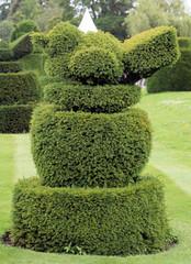 Robin topiary