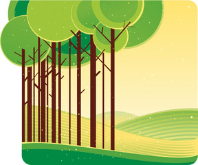 A stylized illustration of the summer the green forest