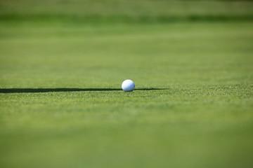 golfball auf dem fairway