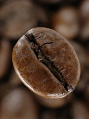 Coffee bean in deep shadows over unfocused grains background