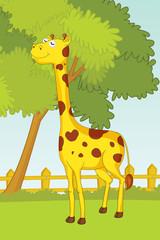 illustration of giraffe in garden