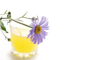Glass of juice with daisy