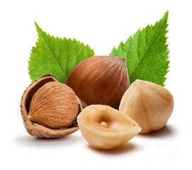 Hazelnuts and leafs