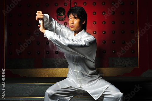 a history of various martial arts in asia Why were so many unarmed martial arts why were so many unarmed martial arts developed in asia of the place of martial arts in chinese history but also the.