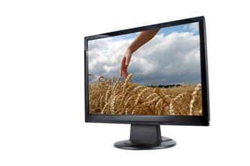 Modern lcd monitor with picture