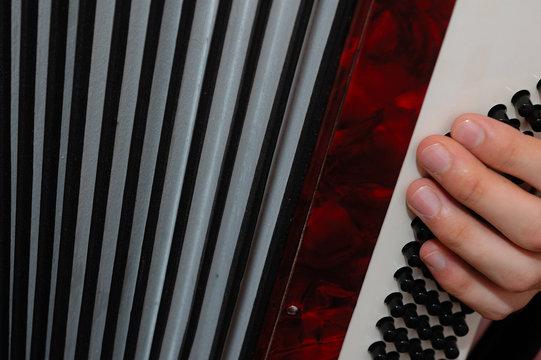 Tocando el acordeon