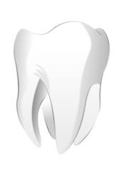 Zahn als Vektor