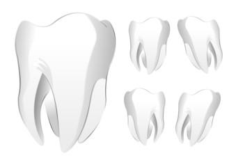 Zahn Set als Vektor
