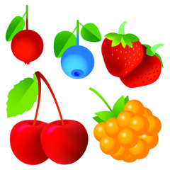 Cherry, strawberry, cloudberry, blueberry, cranberries