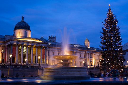 trafalgar square in christmas with christmas tree display