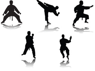 karate player with shadow - vector