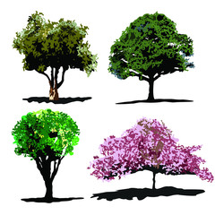 Four Trees Vector Set