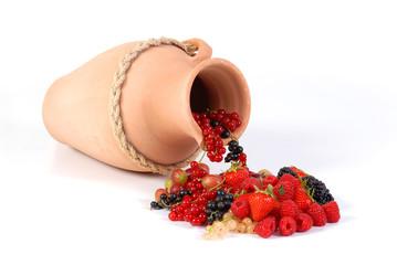 Früchte1