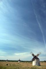 Historische Windmühlen auf der Insel Fanö, Gotland