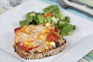 Tuna melt with side salad.