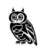 Beautiful isolated owl