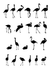flamingo silhouettes collection