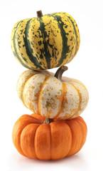 three colorful pumpkins