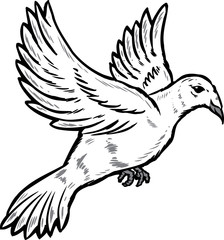 Dove in flight illustration