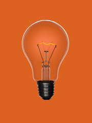 Bulb light on orange