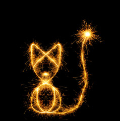 The cat from bengal fires