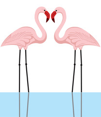 illustration of a couple of pink flamingos in a lake