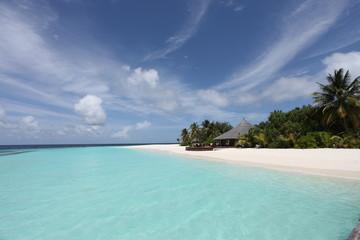 Paradise - Paradies