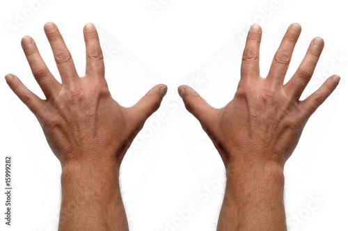 Téléchargement de 10 doigts schreiben