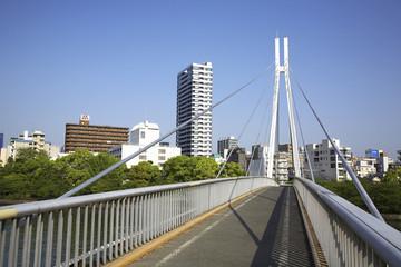 大阪大川に架かる歩道橋