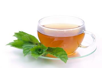 Tee Pfefferminze - tea Peppermint 06