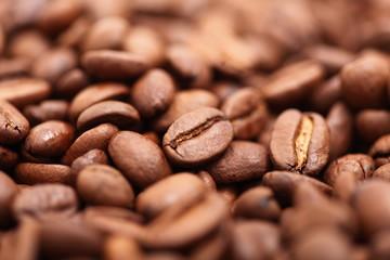 Kaffeebohnen nahaufnahme geschmackvoll