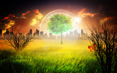 Save the world - Nature and environmental protection