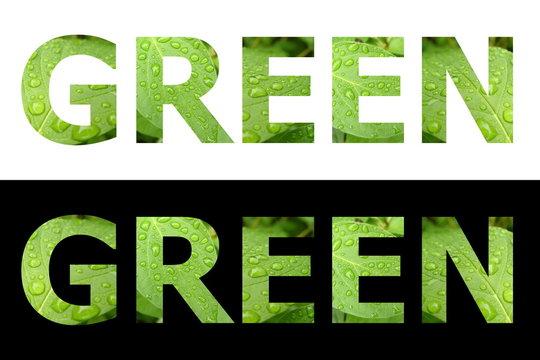 Textured Word Green
