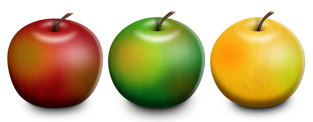 3 Apples Raster Illustration