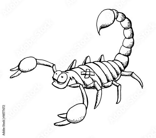 Scorpion Skorpion Escorpion Scorpio Stockfotos Und Lizenzfreie